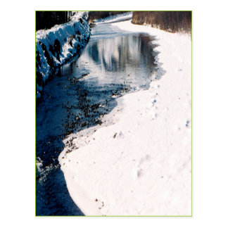 Snowy Salmon Idaho Postcard