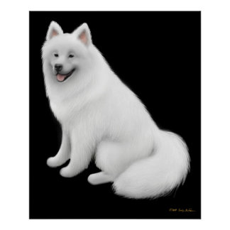 Snowy Samoyed Dog Print