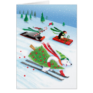 Snowy Skiing Polar Bear Sledding Penguin Sea Lion Card