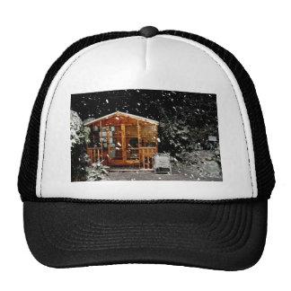 snowy summer house winer scene trucker hats