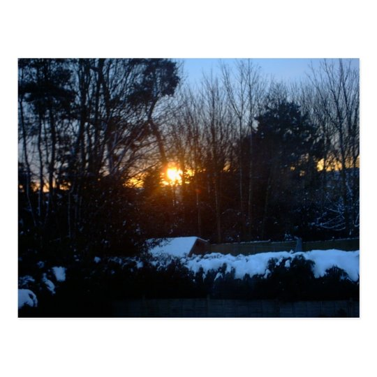 Snowy Sunrise Postcard