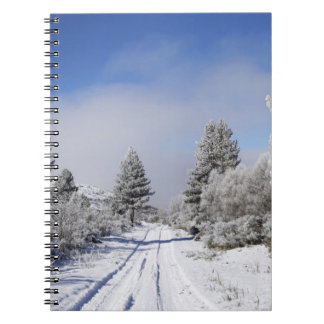 Snowy Track and Pine Trees, Cambrians, near St Spiral Notebook