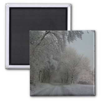 Snowy Track Square Magnet