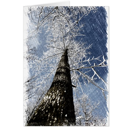 Snowy Tree Card