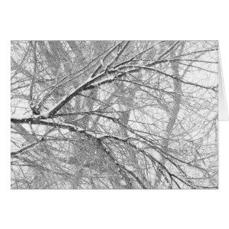 Snowy Trees Card