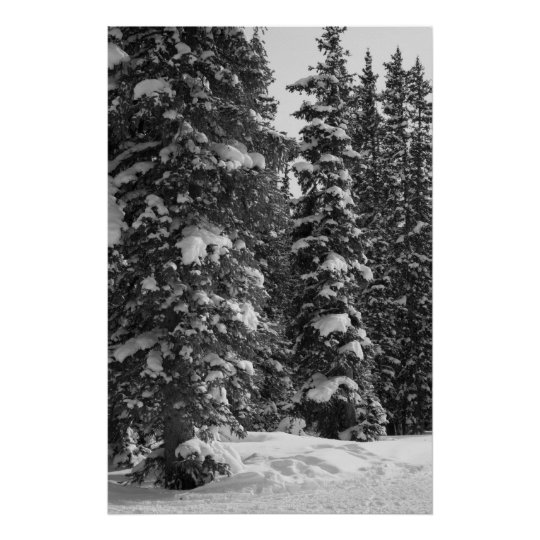 Snowy Trees Christmas Landscape Nature Poster