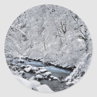 Snowy white creek scenic, Oregon Classic Round Sticker