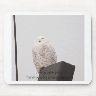 Snowy White Owl .jpg Mousepad