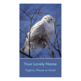 Snowy White Owl, White Arctic Bird, Sapphire Sky Pack Of Standard Business Cards