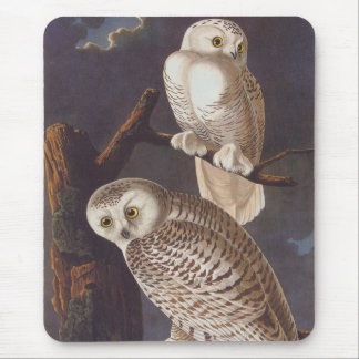 Snowy White Owls on a Dark Scary Night by Audubon Mouse Mat