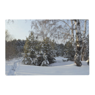 Snowy Winter Day Laminated Place Mat