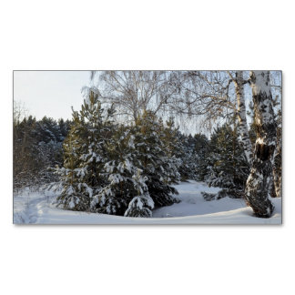 Snowy Winter Day Magnetic Business Cards