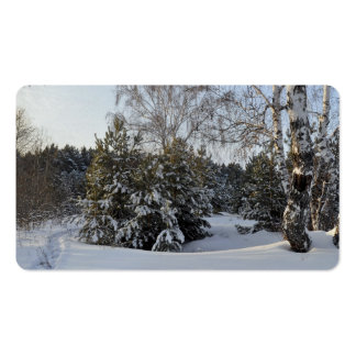 Snowy Winter Day Pack Of Standard Business Cards