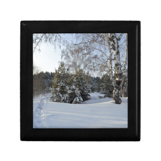 Snowy Winter Day Small Square Gift Box