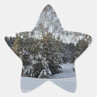 Snowy Winter Day Star Sticker