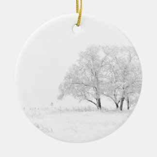 Snowy Winter Landscape Photography Christmas Ornament