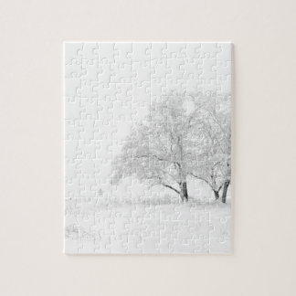 Snowy Winter Landscape Photography Puzzle