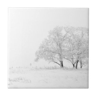 Snowy Winter Landscape Photography Small Square Tile