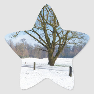 Snowy winter landscape with bare tree and blue sky star sticker