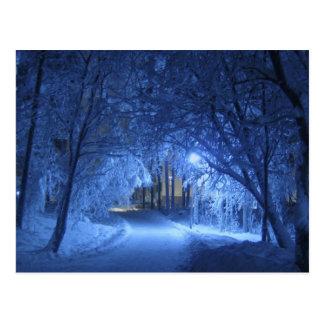 Snowy Winter Night Postcards