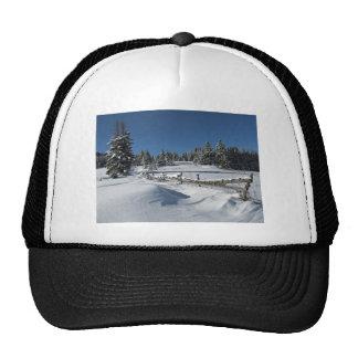 Snowy Winter Scene Mesh Hat