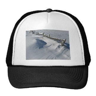 Snowy Winter Scene Hat