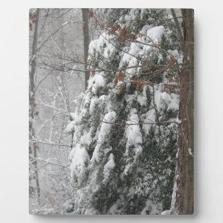 Snowy Winter Tree Scene Display Plaque