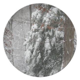 Snowy Winter Tree Scene Dinner Plates