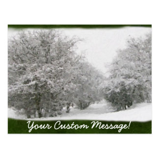 Snowy Winter Trees and Shrubs Postcard