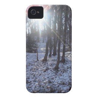 Snowy woodland iPhone case