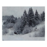 Snowy Woods Poster