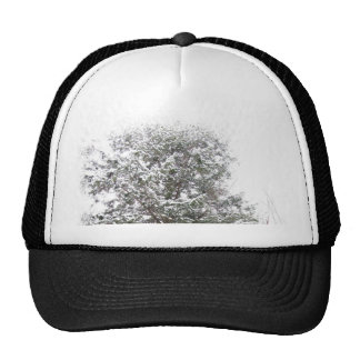 Snowy Xmas Trees in a Winter Wonderland Forest Cap