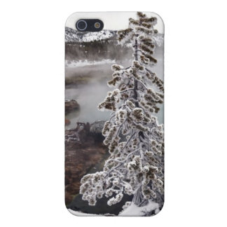 Snowy Yellowstone Case For iPhone 5/5S
