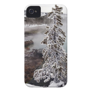 Snowy Yellowstone Case-Mate iPhone 4 Case