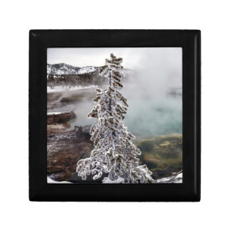 Snowy Yellowstone Gift Box