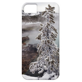 Snowy Yellowstone iPhone 5 Cover