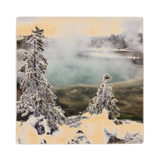 Snowy Yellowstone Wood Coaster