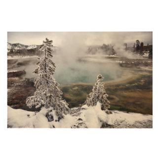Snowy Yellowstone Wood Wall Art