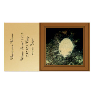 snrkeling blowfish (I) Pack Of Standard Business Cards