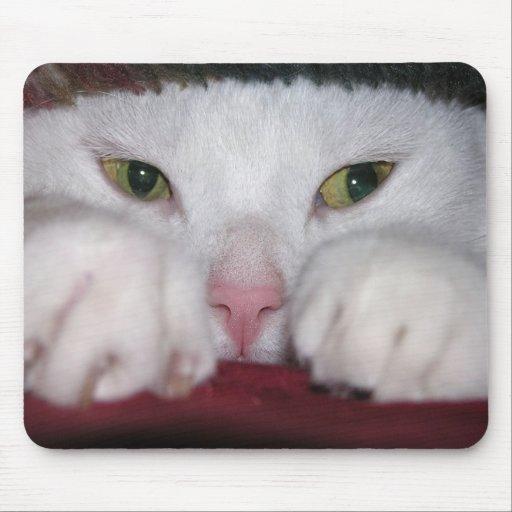 Snug As a Bug Mousepad
