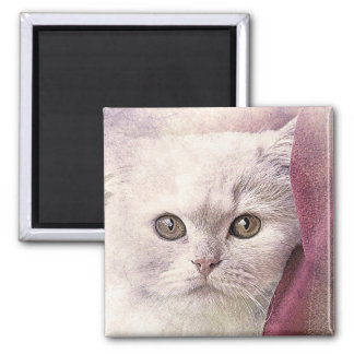Snuggle Time Kitty | Abstract | Watercolor Magnet