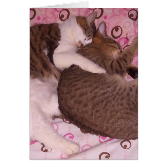 Snuggling Cats CricketDiane Art & Photography Card