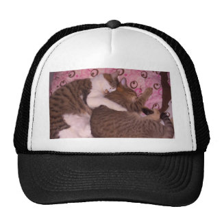 Snuggling Cats CricketDiane Art & Photography Hat
