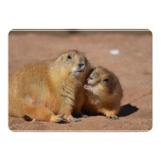 "Snuggling Prairie Dogs 5"" X 7"" Invitation Card"