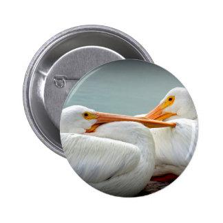 Snuggly Pelicans 6 Cm Round Badge