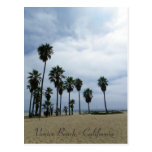 So Beautiful Venice Beach Postcard!