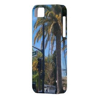 So Radical - LA Palms iPhone Case