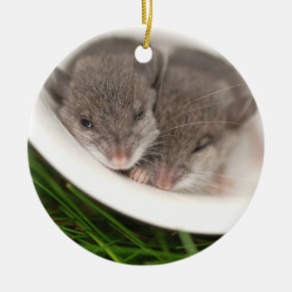 So Sleepy Baby Mice Round Ceramic Decoration