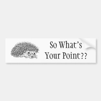 So What's Your Point?? Bumper Sticker