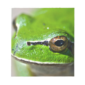 So you are a Frog Notepad